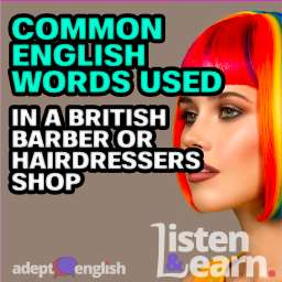 A photograph of a beautiful woman with colourful hair. English phrases and vocabulary for a British barber or hairdressers shop.