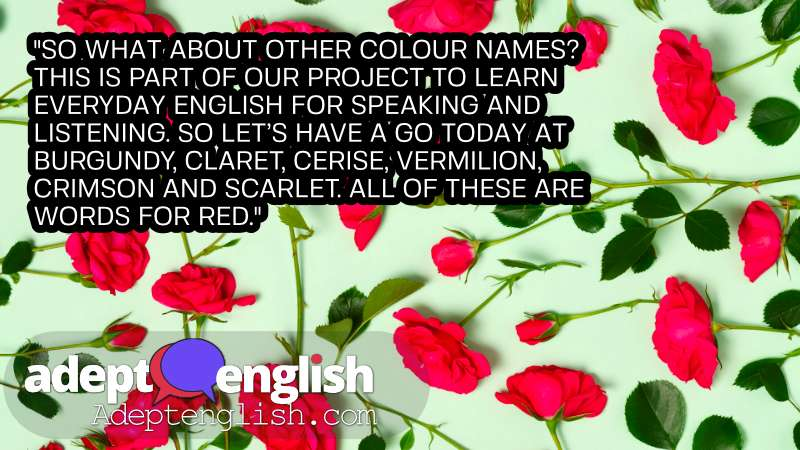 A photograph crimson roses. In this English lesson we talk through more descriptive words and phrases for the colour red.