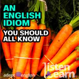 A vibrant photograph of bright orange carrots, which are the star of our English lesson on an English idiom.