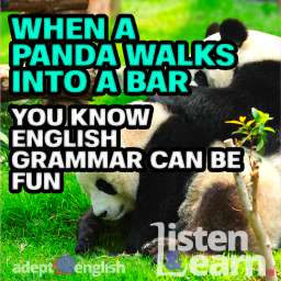 A photograph of two panda in a green grass field. The grammar example used in this English grammar lesson uses a panda to help get the point across.