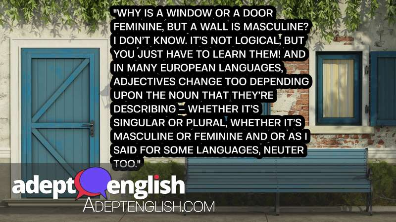 A photograph of a facade with a door and window. As we as the question, why do some languages use gender for objects?