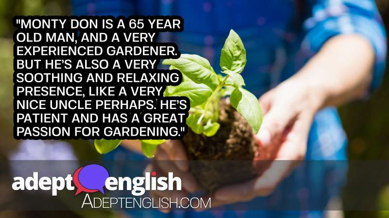 A photograph of a Mid section of woman holding sapling in garden. In todays soothing English listening practice lesson.