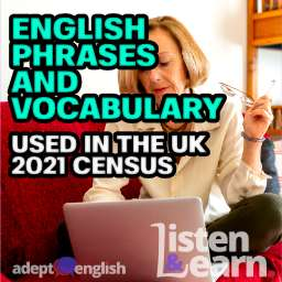 A lady sits on a sofa with a laptop filling out the UK 2021 census. Today we practice English phrases and vocabulary related to filling in forms.