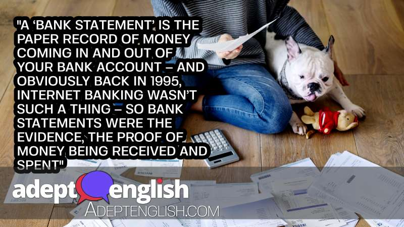 A photograph of a woman and her pet dog looking at bank statements. We explore the types of English phrases encountered in an investigation.