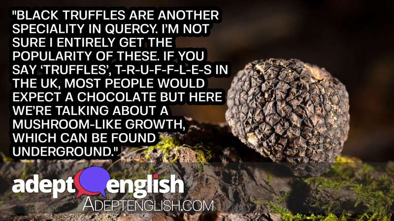 A close up photograph of black truffles. Part of this English speaking practice conversation.