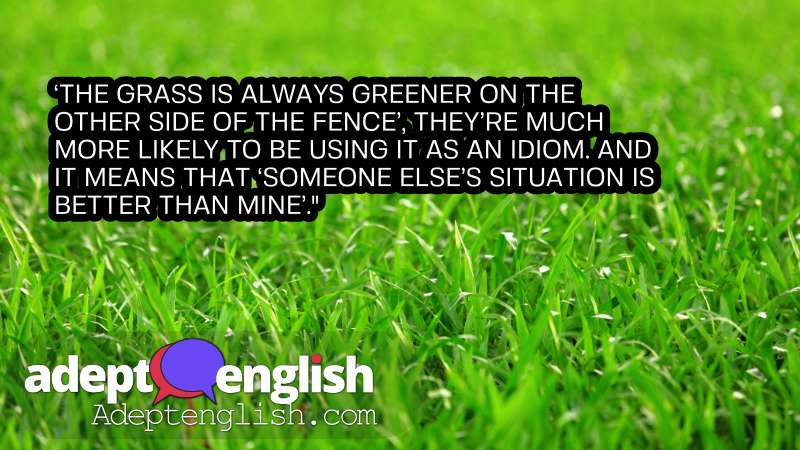 A photograph lush green grass. Useful English idioms explained while we practice speaking English.
