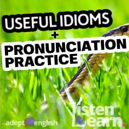 A photograph of a garter snake slithering through grass. We explain some interesting English idioms in todays English speaking practice lesson.