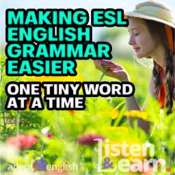Summer on an organic farm. A young woman in a field of flowers, the cover images used for this ESL English grammar lesson.