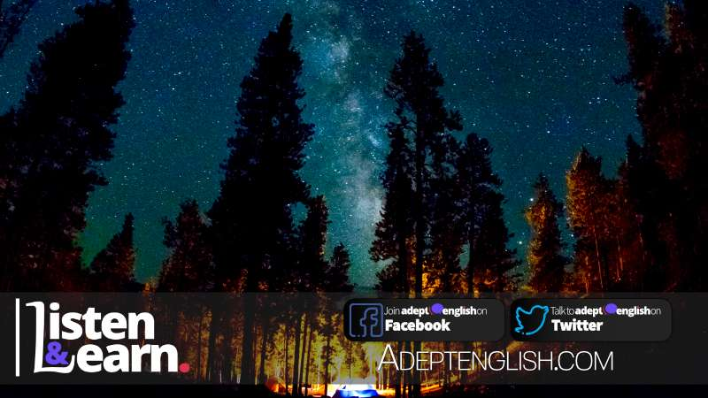 A magnificent photograph of the stars at night from a camping site in a forest. Learning more than just how to speak English fluently.