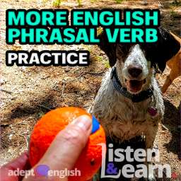 A photograph of someone about to throw an orange ball for two eager dogs. Today we tackle the most common English phrasal verbs which use to throw in them.